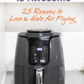 25 Reasons to Love-Hate Air Frying with your Air Fryer | AirFryerWorld.com