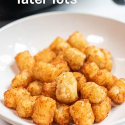 Air fried frozen tater tots in the air fryer | AirFryerWorld.com