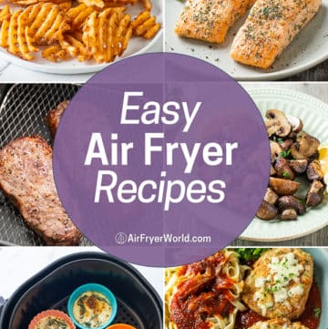 Easy Air Fryer Recipes that's Air Fried Healthy Recipes | AirFryerWorld.com